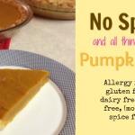 No Spice Pumpkin Pie (dairy free, gluten free)